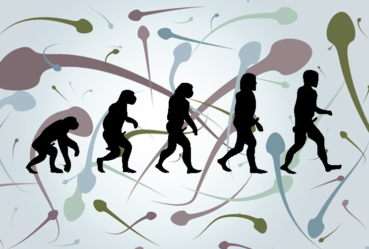 A Sort Of History Of Masturbation: Part 1, Primates and Cavemen