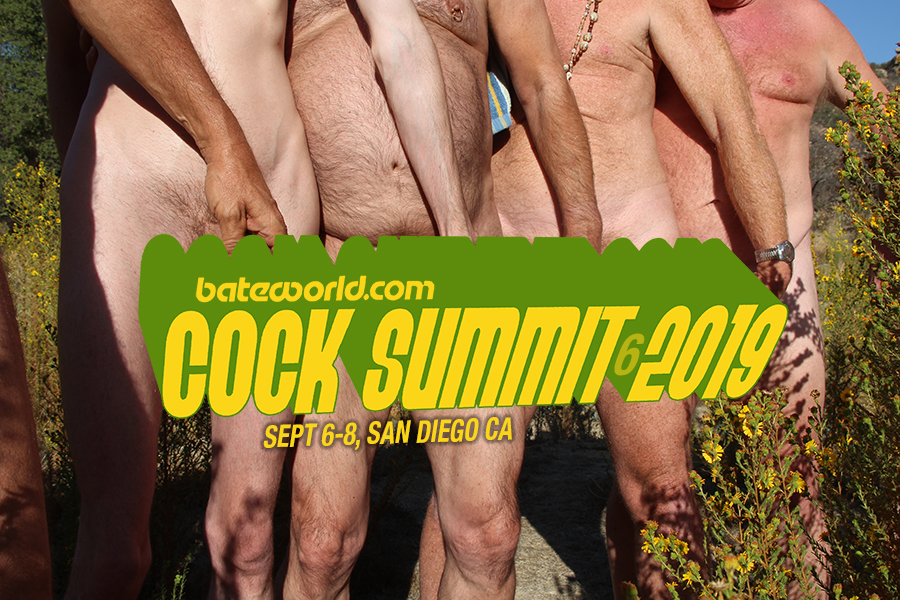 Bateworld's Cock Summit 6, 2019: A Participants Response